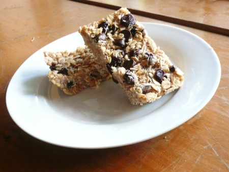 No-Bake Cocoa Nut Coconut Oat Bars